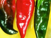 pepper-anaheim-m