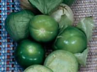 tomatillo-m